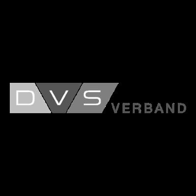 Logo-DVS