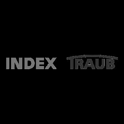 Logo-IndexTraub